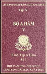 tn-a-ham-tap-5