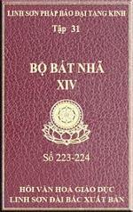 tn-bo-bat-nha-31