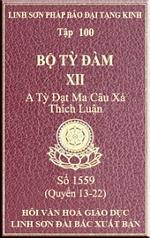 tn-bo-ty-dam-100